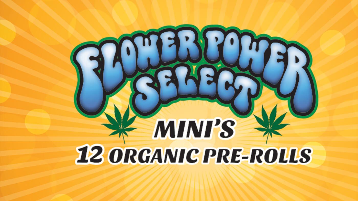 Flower_Power_Logo